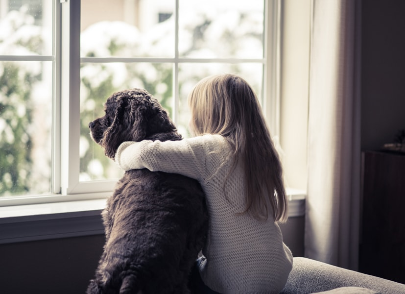 Girl and her dog looking out the window and enjoying the benefits and value of a geothermal heat pump to her home.