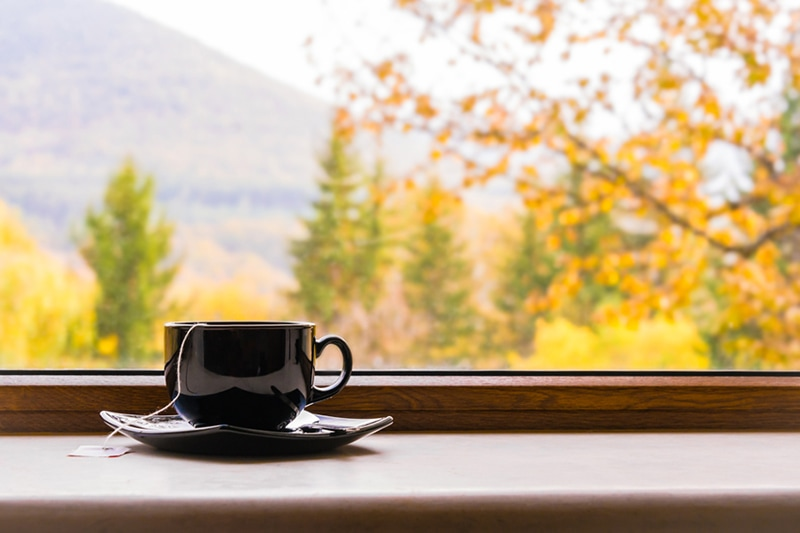 Why Do I Need a Humidifier in the Fall? A cup of tea in front of a window with autumn view.